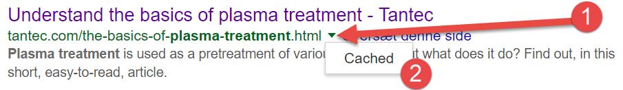 Googlebot cached